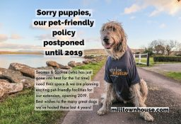 Due to renovations we will be postponing our dog-friendly policy until 2019